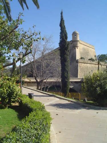 Sa Feixina, Palma