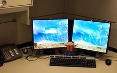 Flat Stanley is in My Office