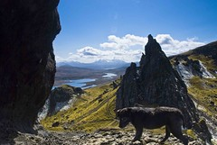 Storr3 (tanera) Tags: blue dog skye clouds rocks isleofskye jet bluesky cumulus cuillins anywhere trotternish storr wwwtaneracouk httptaneracouk