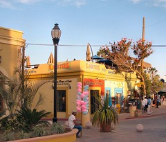 Cotton Candy, early evening at Mijares Square, San Jos del Cabo, Mexico (Rana Pipiens) Tags: mexico nashville stlouis margarita cottoncandy bajacaliforniasur thomasjefferson shooters sanjosdelcabo dentists fairyfloss fpc blueribbonwinner spathodeacampanulata africantuliptree louisianapurchase supershot golddragon fountaintree mywinners abigfave platinumphoto anawesomeshot diamondclassphotographer flickrdiamond stlouisworldsfair goldstaraward thomaspatton williamjmorrison nicholastamaral josephdelaroslascaux johncwharton monogramy