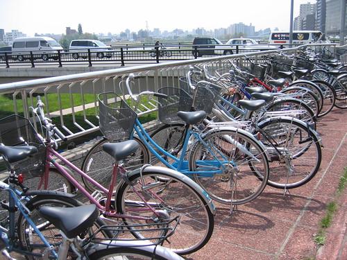 自転車と自動車
