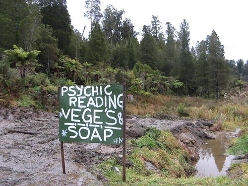 Painted Blackboard sign in mud reading 'Psychic Reading, Vege's & Soap'