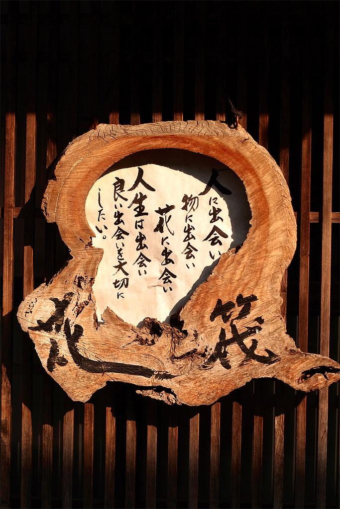 長野県木曽 花筏