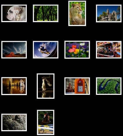14 photos in the Nikon D700 gallery at NikonUSA.com
