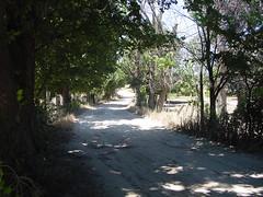 ruta rivas julio