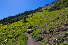 Marmot Pass trail Photo