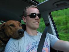 The man and his dog (sunnfjording) Tags: dog driving martin leo ridgeback africanlionhound