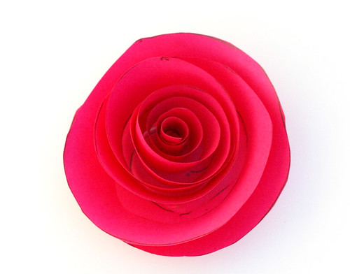 Pink cardstock rose