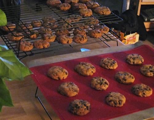 Low Light Cookies