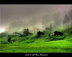 Ayder - RZE (Ozcan MALKOCER) Tags: house green clouds forest 1855mm 1001nights karadeniz hdr rize ayder supershot canonrebelxti platinumphoto theunforgettablepictures thebestofday gnneniyisi alemdagqualityonlyclub flickrlovers goldenvisions saariysqualitypictures