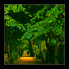 Lost in thought (regina_austria) Tags: trees fab green leaves alley searchthebest distillery gbr themoulinrouge firstquality 100faves 50faves kartpostal passionphotography mywinners reginaaustria theperfectphotographer goldstaraward multimegashot colourvisions llovemypics photoshopcreativo obq oraclex lesamisdupetitprince goldenmasterpiece novusvitanewlife