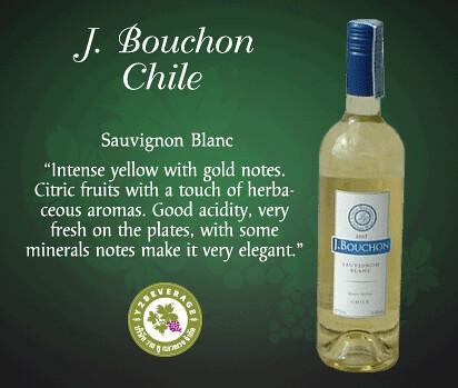 J.Bouchon / Chile