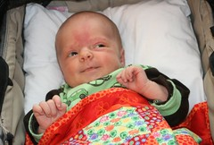 Ava, 29 dagar gammal