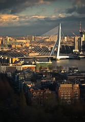 """Rotterdam Impressions: """"The Swan"""" (Allard Schager) Tags: panorama seascape haven holland netherlands skyline architecture port rotterdam nikon 1996 nederland pylon explore observationplatform crowsnest 2008 kopvanzuid euromast erasmusbrug theswan zuidholland nieuwemaas erasmusbridge 364 benvanberkel southholland dezwaan portofrotterdam cablestayedbridge i500 d80 nikond80 nikkor70300mmvr allardone allard1 keknawwathoogannie 96metersaboveground allardschagercom"""
