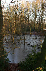 (*Grimmy*) Tags: frozenlake heatonpark
