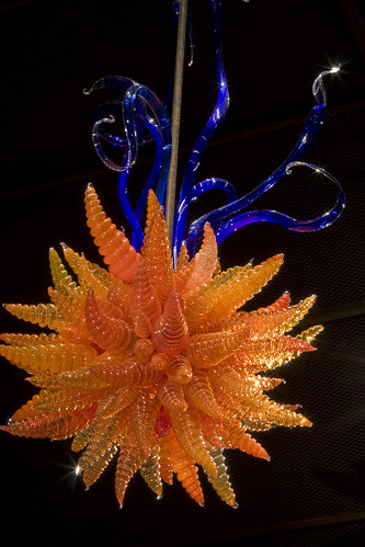 Chihuly_5825