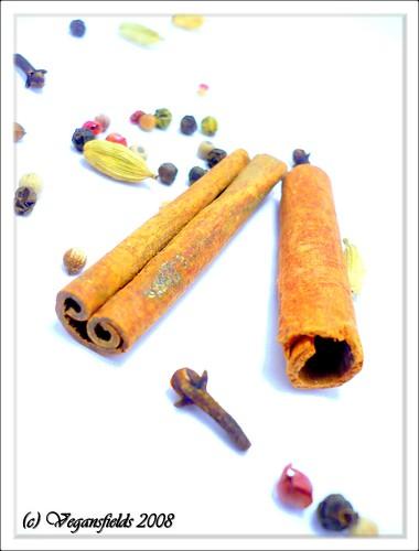 Vin Chaud aux épices et sa version sans alcool (vgl) 3116577768_442316cc1d