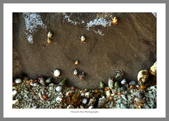 Andamans (lighttripper) Tags: sea sun india islands sand and andaman