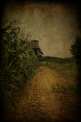 Untitled (Patrick Campagnone) Tags: texture field photoshop landscape corn farm massachusetts country watertower newengland dirt nostalgic concord processed watertank tiretracks dirtpath tamron1735mm