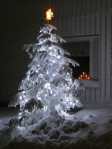 joulu08 168