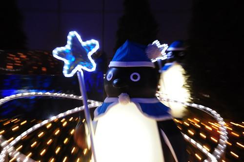 Nikon D90 Penguin focus