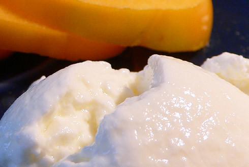 Joghurt aus dem Reiskocher