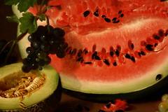 Peale. Still Life with Watermelon (arcticpenguin) Tags: life sarah museum still harvard watermelon miriam sackler peale