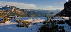 LPT_0297 (Lewis in Washington) Tags: snow hiking mountrainier 2008 mountadams scrambling plummerpeak