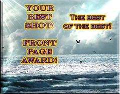 !Your Best Shot! award