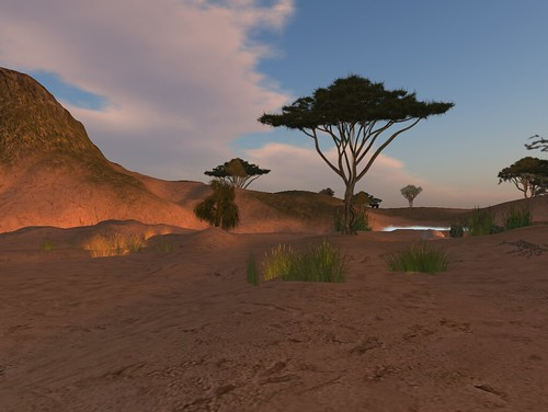 Virtual Africa
