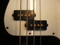 P-Bass w/ Basslines (Roadside Guitars) Tags: fender bassguitar pbass americanstandard precisionbass
