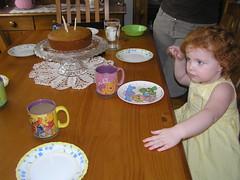 happy birthday Winnie the Pooh (greenjellysnakes) Tags: 2009 peachfuzz honeycake winniethepoohday