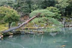 16-Tenryuji garden