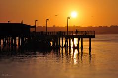Fish On (Lee Sie) Tags: ocean orange sun water silhouette sunrise bay harbor pier fishing fisherman dock downtown sandiego