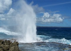 tinian blow hole 134 (topofbroadway) Tags: ocean swim dive blowhole tropical snorkle saipan micronesia cnmi tinian 5photosaday anawesomeshot argosycasino topofbroadway crneltner chrisneltner northernmariannasislands saipanislandisland topofbroadwaytopofbroadway