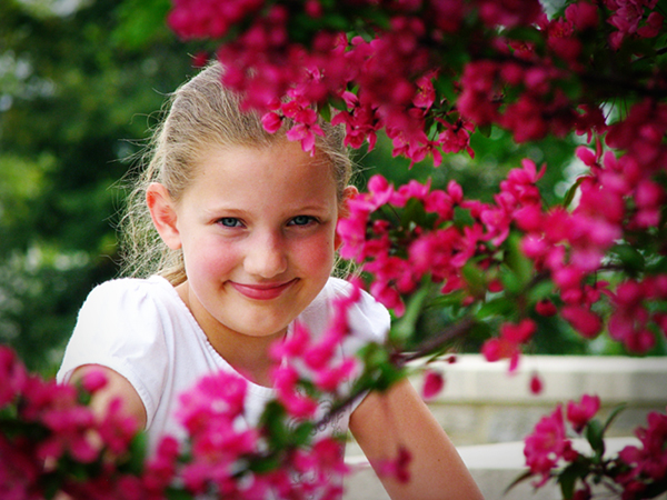 framed by flowers flickr