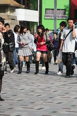 girls japanの壁紙プレビュー
