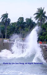 Waves pounding the sea wall (lspeng) Tags: sea nature canon waves seawall disaster esplanade penang coconuttrees
