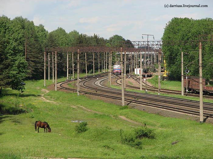 minsk_horse_rail