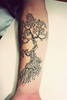 bonsai tattoo