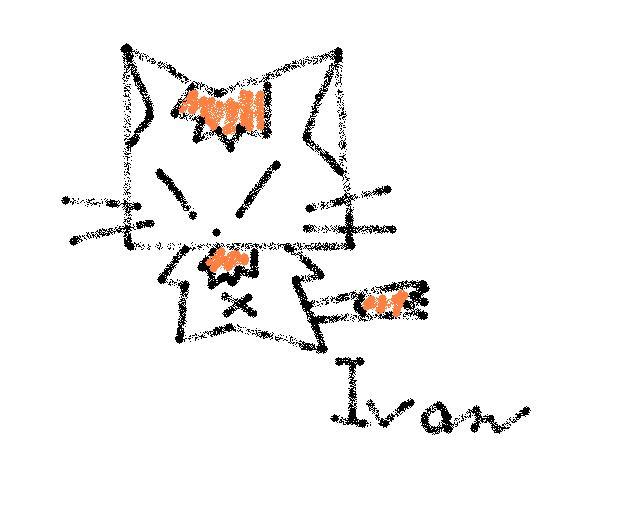 狐狸 Fox