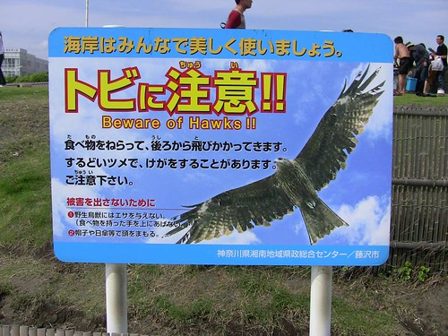 Beware of Hawks