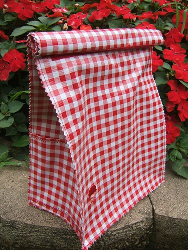 red gingham bag