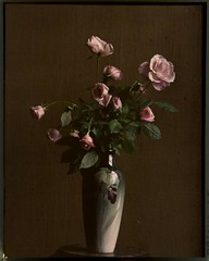 Pink roses in vase (George Eastman House) Tags: pink flowers flores rose vase rosas vaso pinkrose georgeeastmanhouse autochrome photo:process=colorplatescreenautochromeprocess color:rgb_avg=312312 gwogrady geh:accession=197902420028