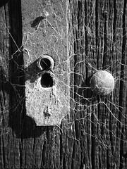Fechadura (Jorge Luis Stocker Jr [thesapox]) Tags: textura decay pb explore pretoebranco detalhe abandono aranha fechadura teia