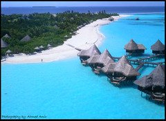 Coco Palm - Dhunikolhu, Maldives ( Ahmed Amir) Tags: show park street new city trip travel flowers blue trees light sunset red sea summer vacation portrait sky people bw sun white house holiday black flower colour macro tree cute green bird art beach home me nature water yellow rock night clouds cat canon garden landscape geotagged fun island photography photo nikon honeymoon day tour photos unique live august tourist amir unclassified land maldives ahmed bungalow atoll bungalows maale maleinternationalairport worldwidelandscapes worldtrekker natureselegantshots goldenmasterpiece