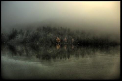 Fog (HDR)