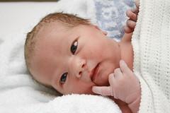 Poppy (Kitenutuk) Tags: new baby cute girl gorgeous adorable poppy beautifull ctr loverly