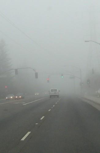 Fog in Sacramento