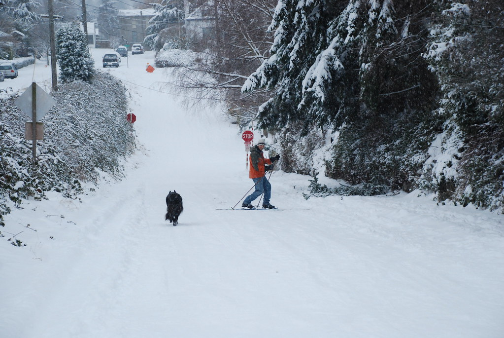 Seattle Snowstorm 2008